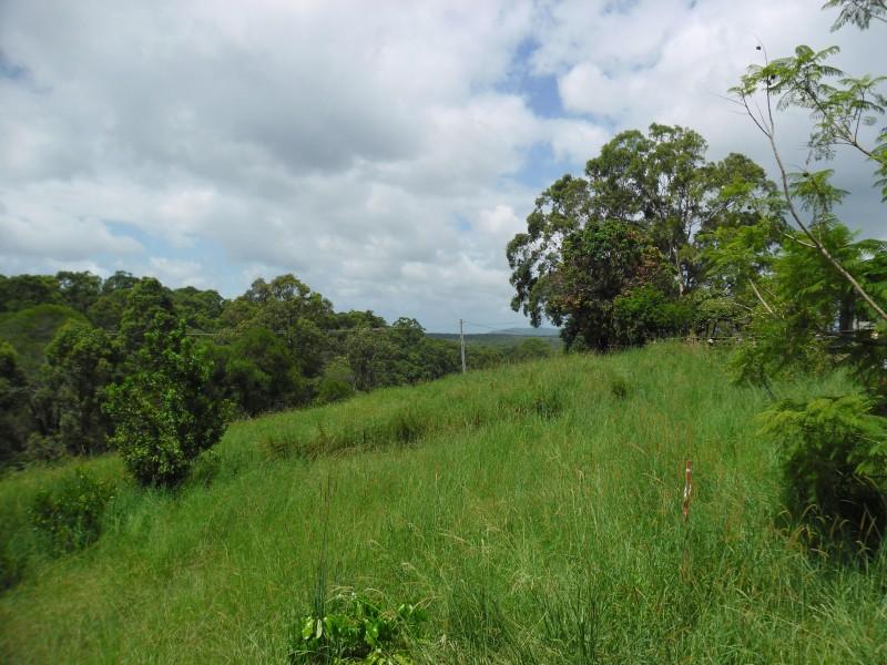 274 Black Mountain Range Road, Black Mountain QLD 4563