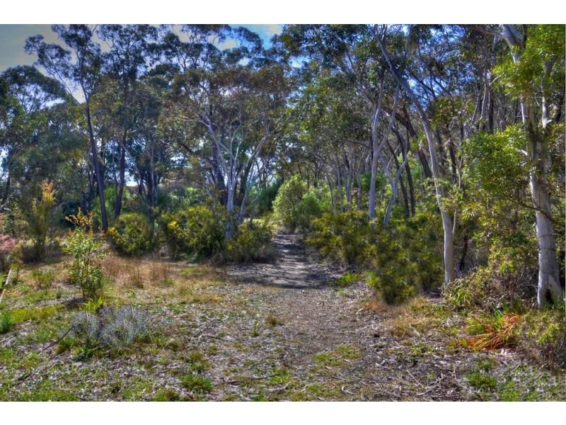 67 Victoria Street, Mount Victoria NSW 2786