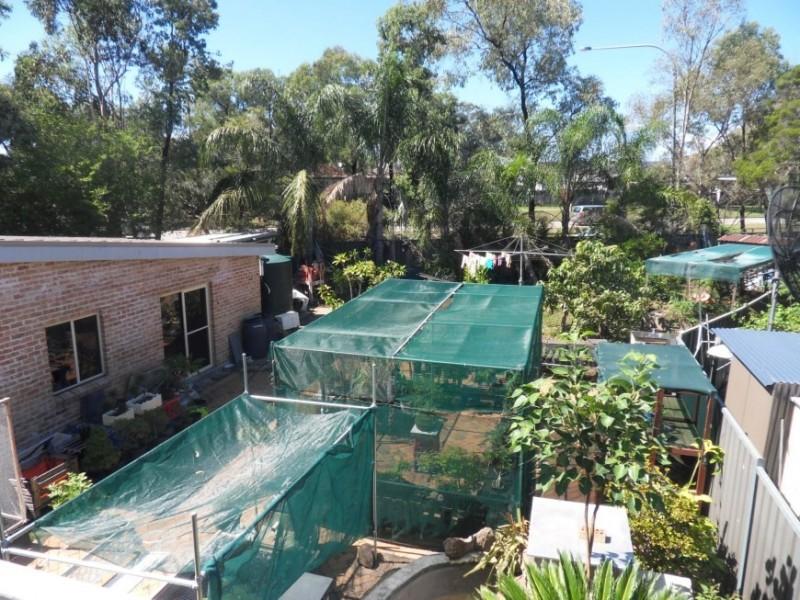 50 Alinga, Cabramatta NSW 2166