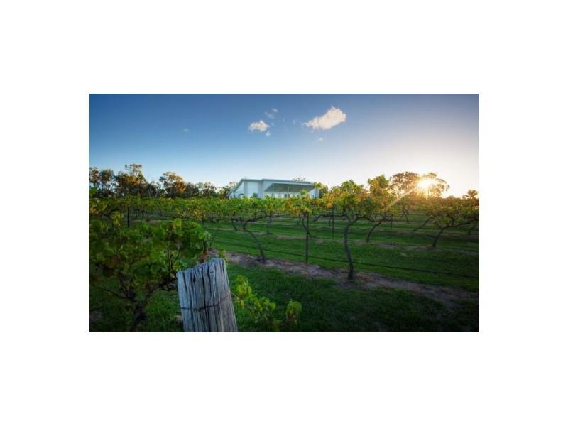 165 Sundown Rd, Ballandean QLD 4382