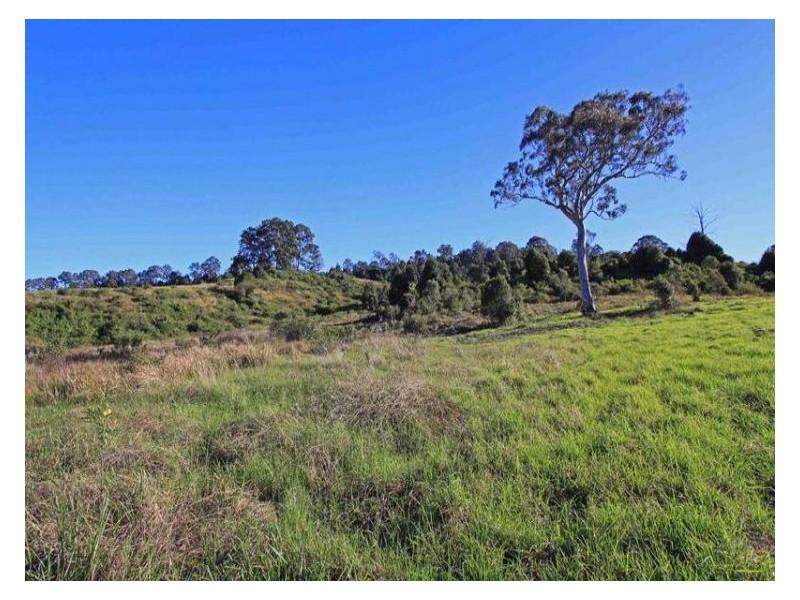 Lot 5, 97 Oxbow Road, Cawongla NSW 2474