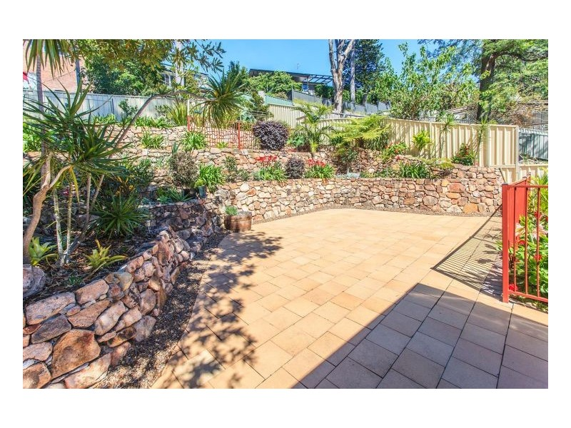 41 Bulkara Street, Adamstown Heights NSW 2289