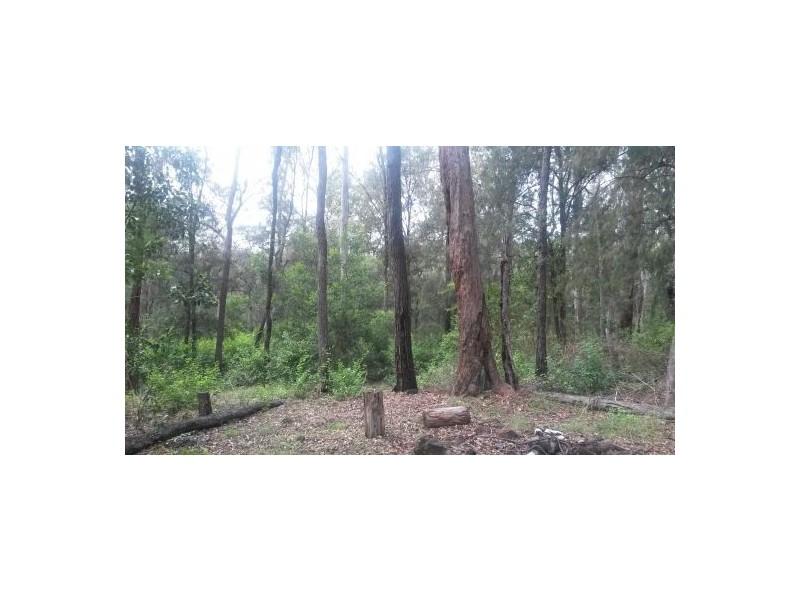 Lot 12 Leslie Creek Road, Drake NSW 2469