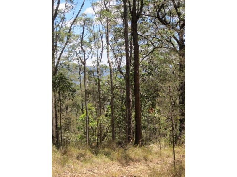 Lot 51 Mud Flat Rd, Drake NSW 2469