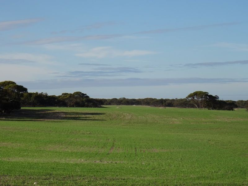 Lot 22 Chaunceys Line Rd, Monarto South SA 5254