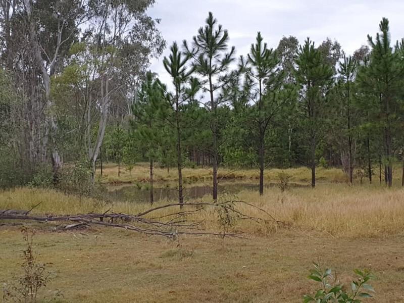 5120 Summerland Way, Whiporie NSW 2469