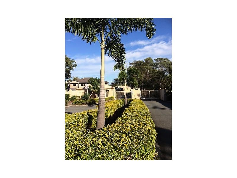 15/202-206 Fryar Road, Eagleby QLD 4207