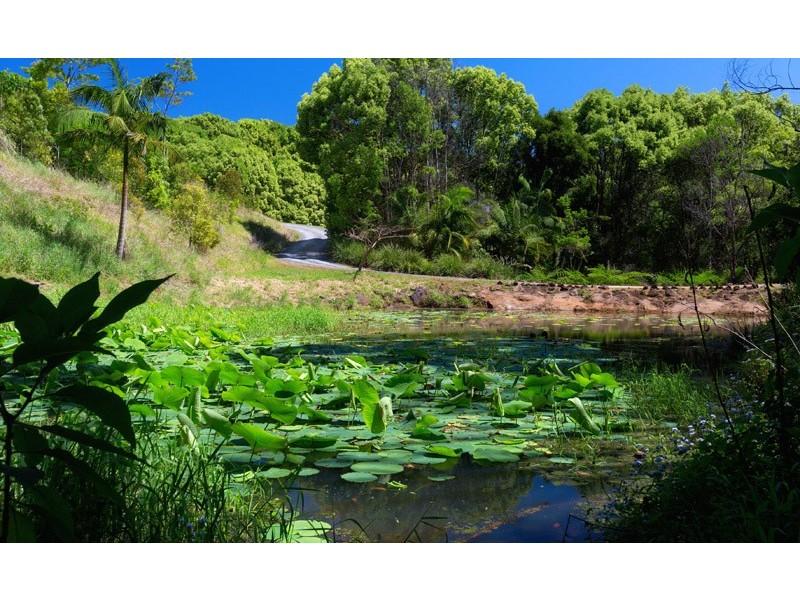 50 Possum Creek Road, Bangalow NSW 2479