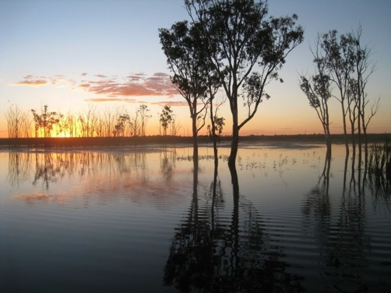 Lower Gwydir River & Bore Water Auction, Moree NSW 2400