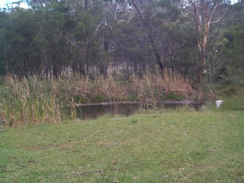 1670 Eukey Road, Ballandean QLD 4382