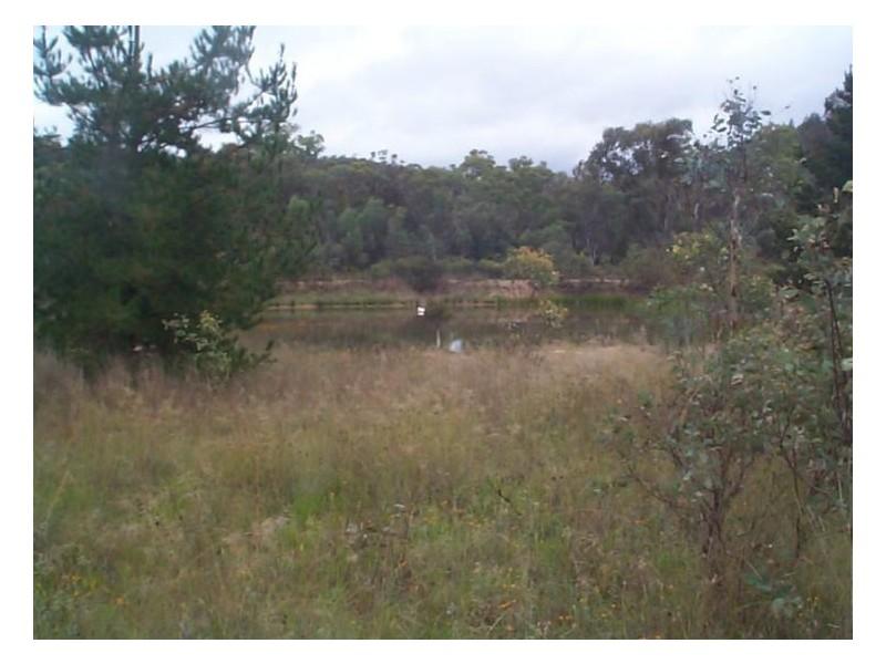 140 Watters Road, Ballandean QLD 4382