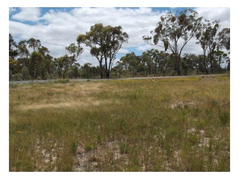 Glen Aplin QLD 4381