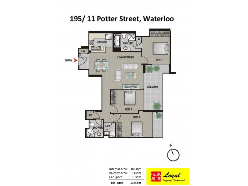195/11 Potter Street, Waterloo NSW 2017 Floorplan