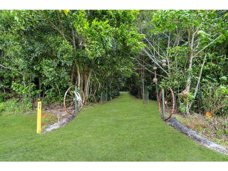 96 Buchanan Creek Road, Cow Bay QLD 4873