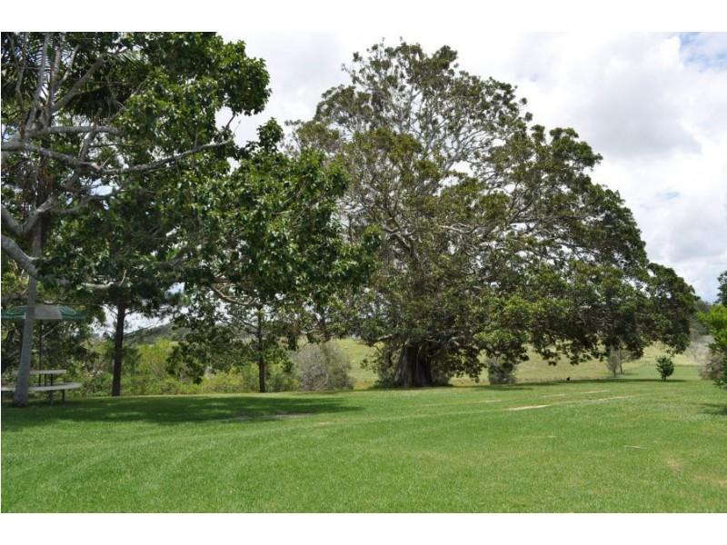 64 Mattick Road, Macksville NSW 2447