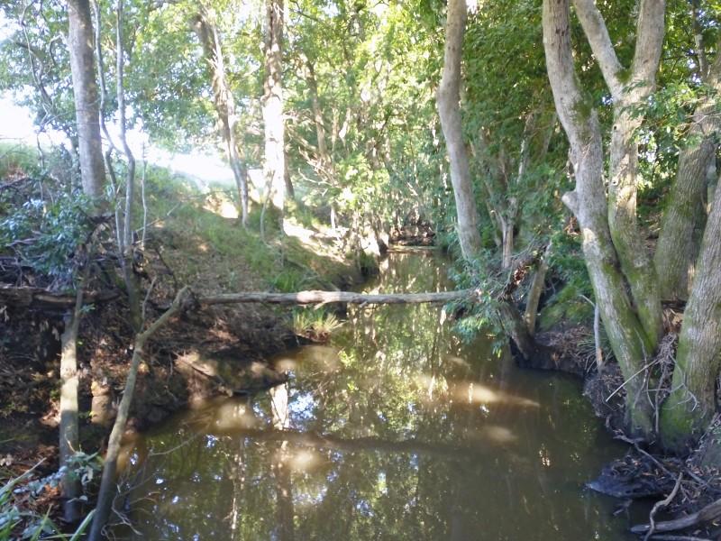 14/450 Chichester Dam Road, Dungog NSW 2420