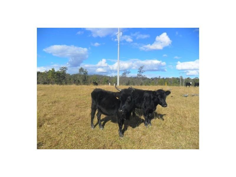 3533c Summerland Way, Gurranang NSW 2460