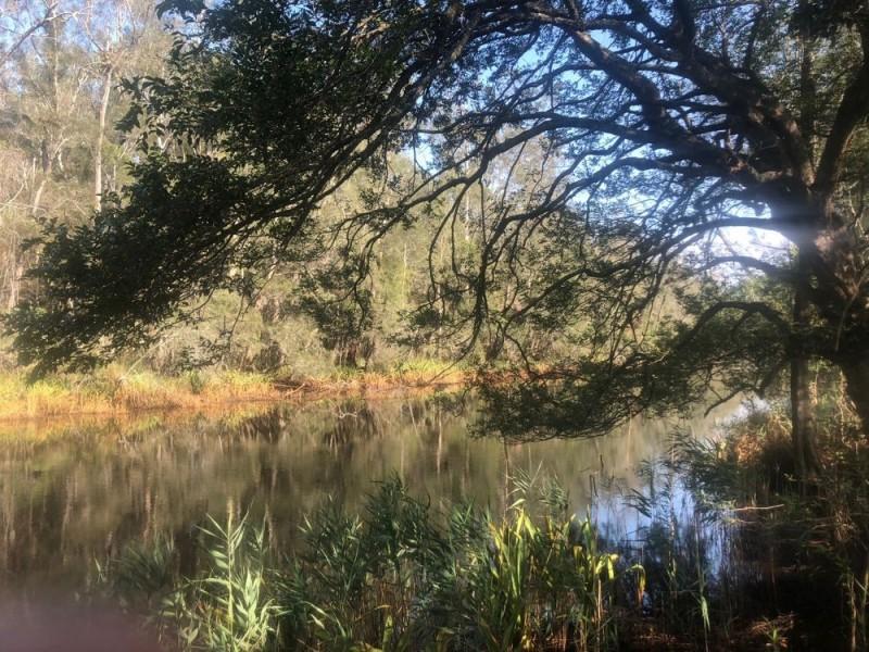 Lot 52 of  583 Maria River Road, Crescent Head NSW 2440