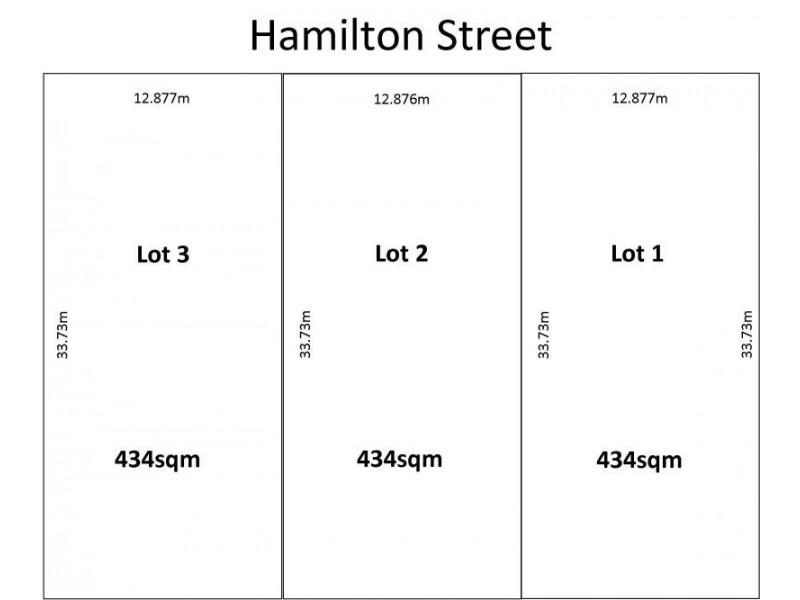 86 Hamilton St, Tingalpa QLD 4173