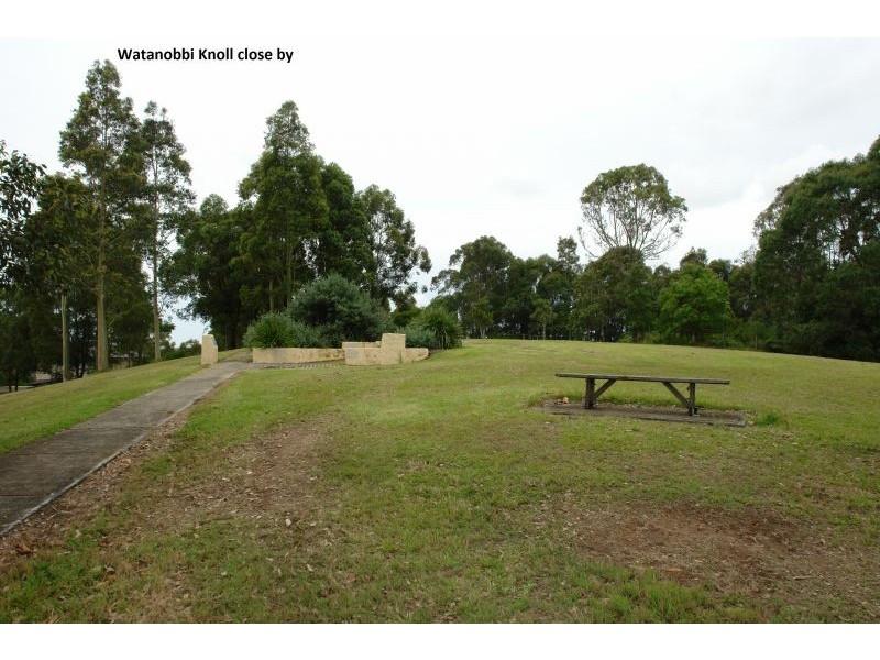 175 Brittania Drive, Watanobbi NSW 2259