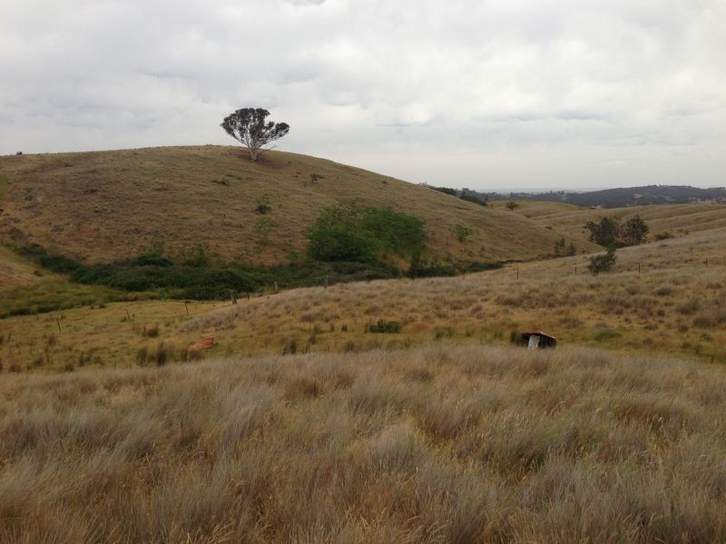 850 Pulletop Road, Big Springs NSW 2650