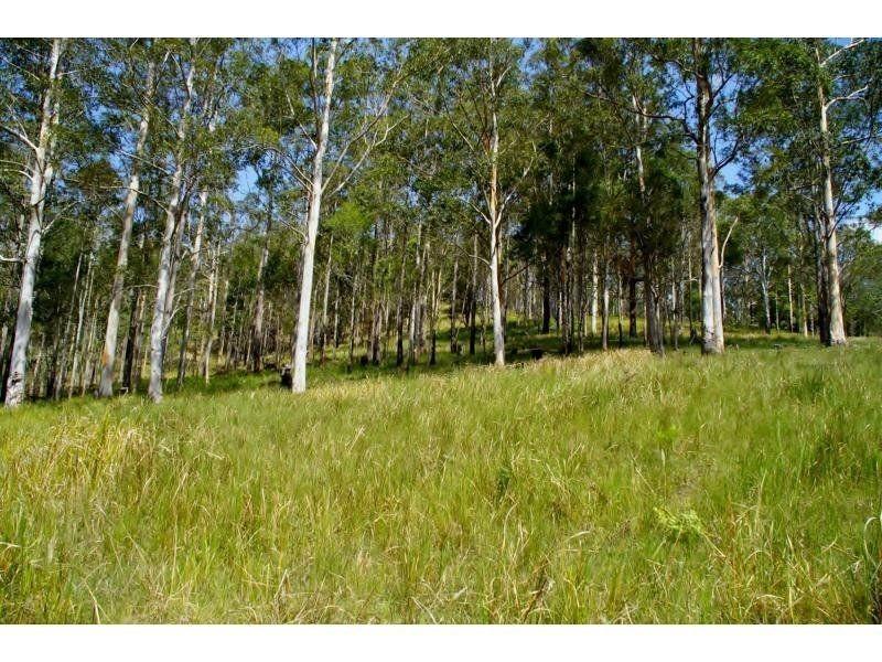 1150 Forbes River Road, Birdwood NSW 2446