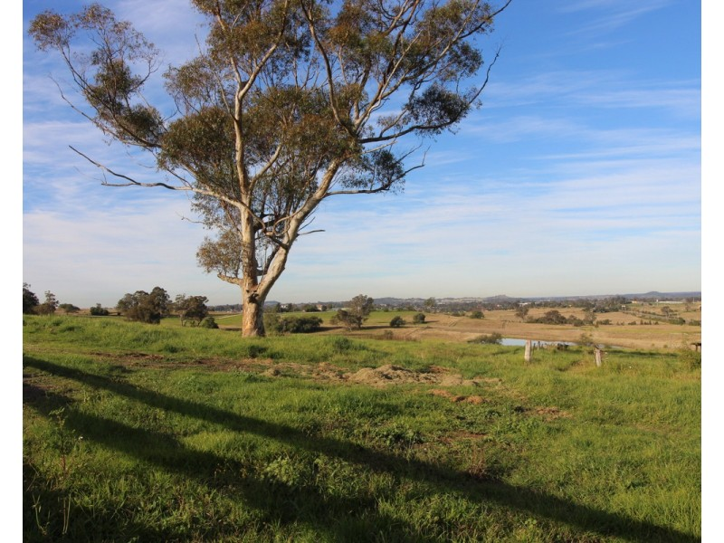 201 The Old Oaks Road, Grasmere NSW 2570