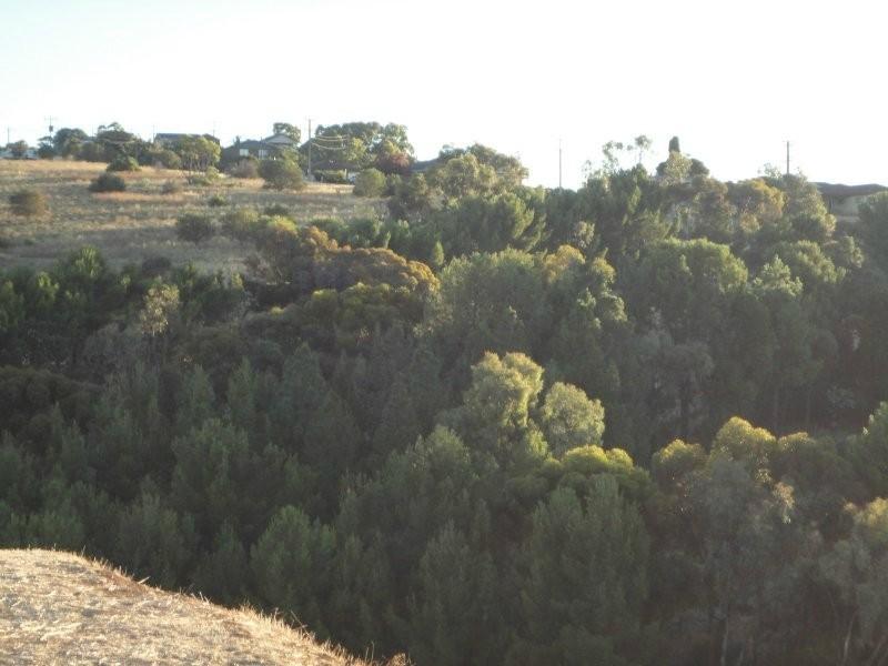 15 Spinks Road, Marino SA 5049
