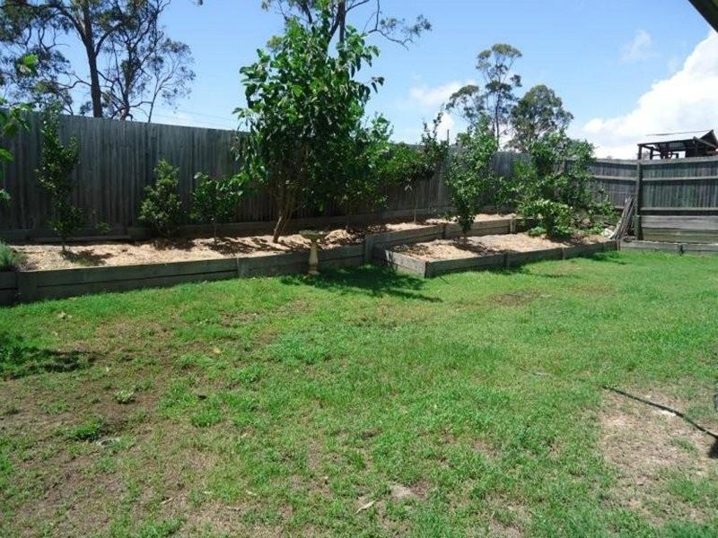24 Goldcrest Drive, Upper Coomera QLD 4209