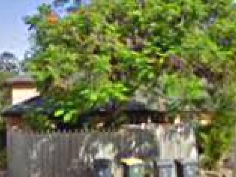 7 Bedser Street, Macgregor QLD 4109