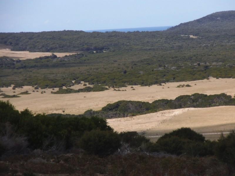 27667/2 Palana Road, Palana, Flinders Island TAS 7255