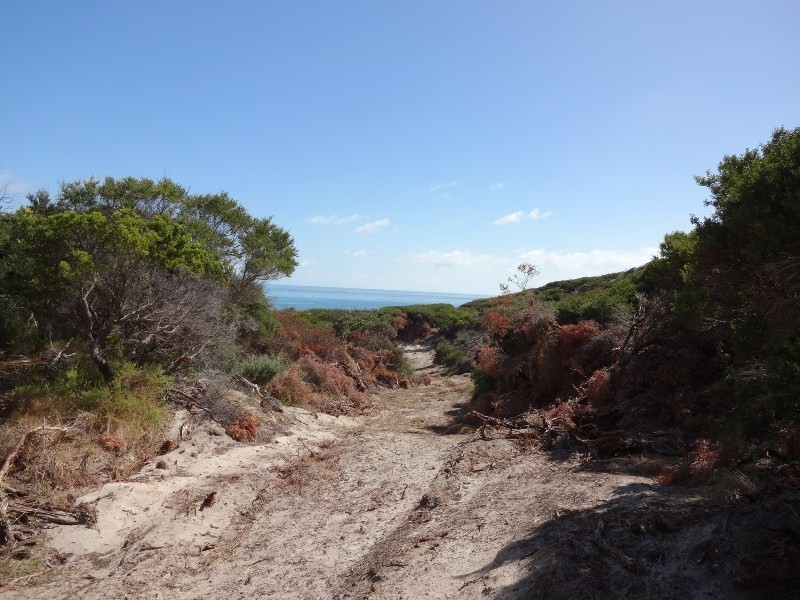 Lot 4, 601 Boat Harbour Road, Killiecrankie, Flinders Island TAS 7255