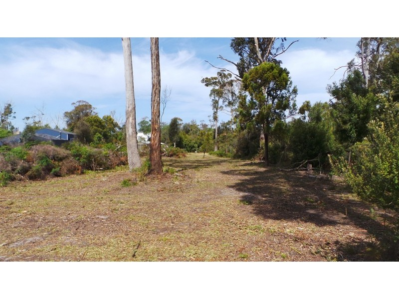 9 Anstey Street, Squeaking Point TAS 7307