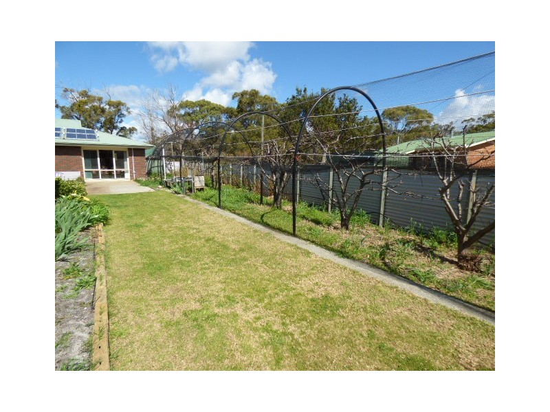 8 Blackwood Court, Ansons Bay TAS 7216