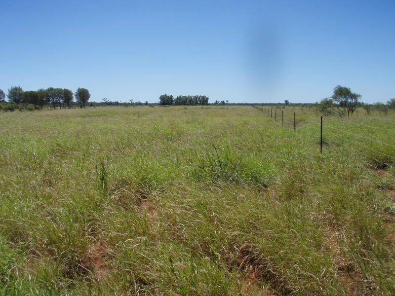 Lot 30 Albert Park Road, Charleville QLD 4470