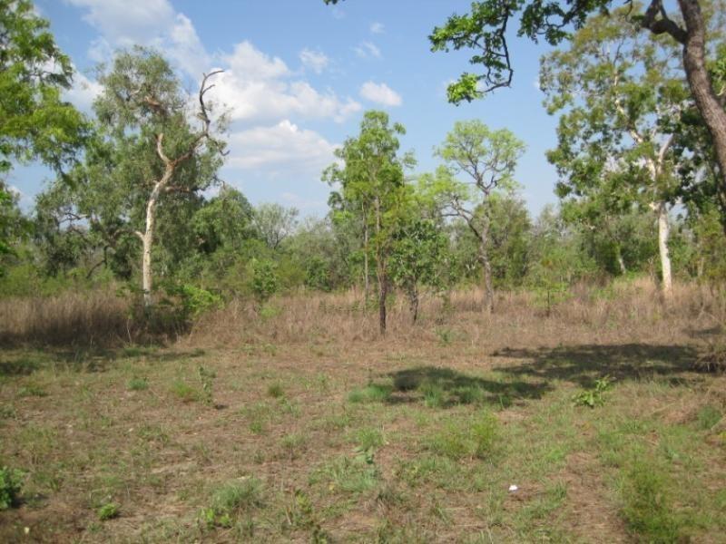 175 Whitstone Road, Acacia Hills NT 0822