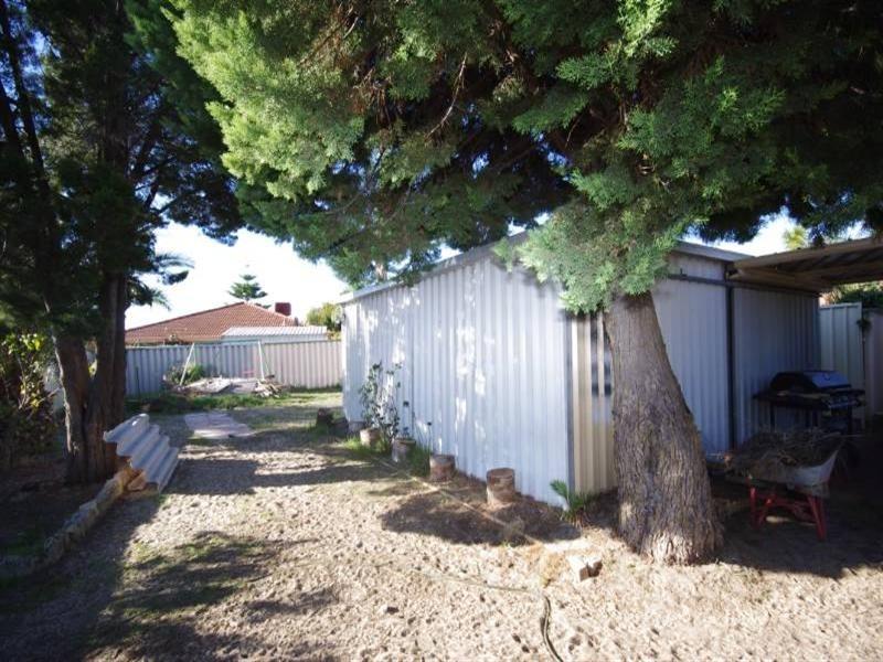 9 Pinetree Close, Alexander Heights WA 6064