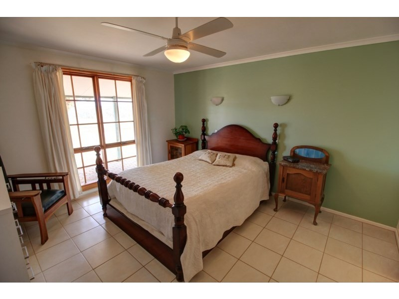 595 Morgan Road, Barmera SA 5345