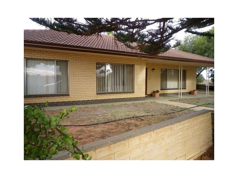 247 Gordon Road, Loveday SA 5345