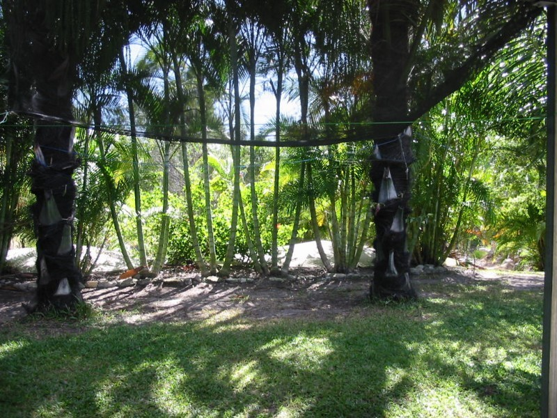 157 Streeter Drive, Agnes Water QLD 4677