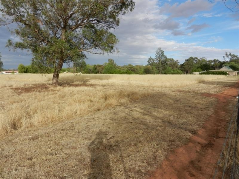 Lot 219 and 220 Wallace Street, Coolamon NSW 2701