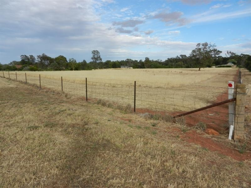 Lot 221 and 222 Wallace Street, Coolamon NSW 2701