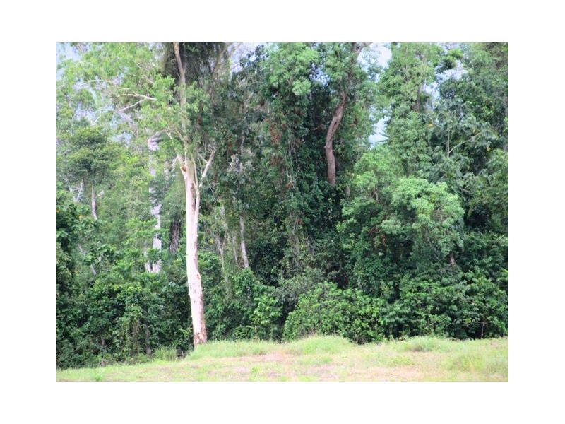Lot 163 Raes Road, Abergowrie QLD 4850