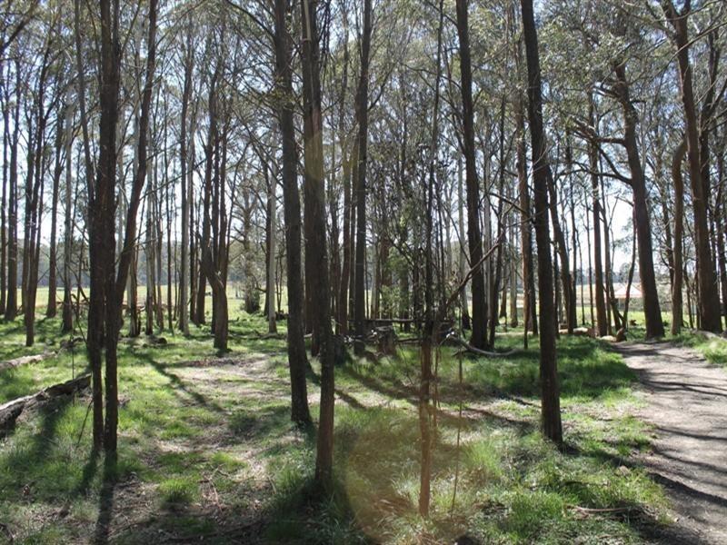 93 Tuglow Road, Gingkin NSW 2787