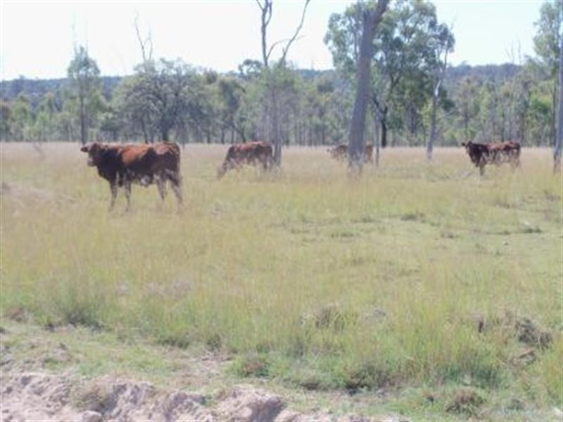 00 Chinchilla – Wondai Road, Ballogie QLD 4610