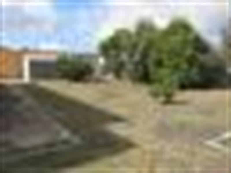 14 Darwin Street, Lockleys SA 5032