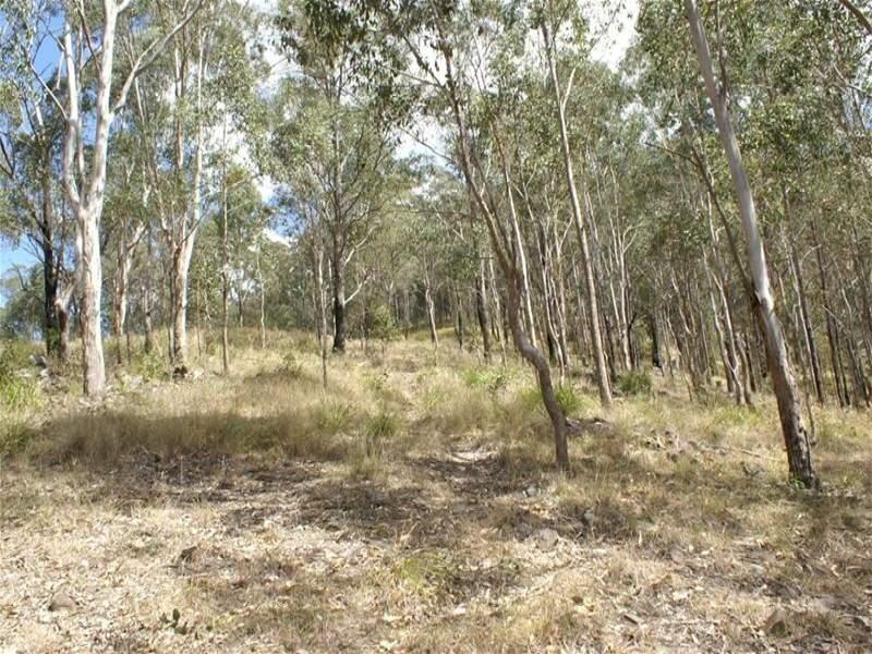 Barrington Tops NSW 2422