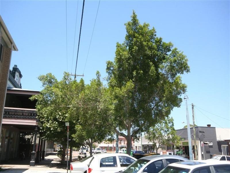 13/124 Young Street, Carrington NSW 2294