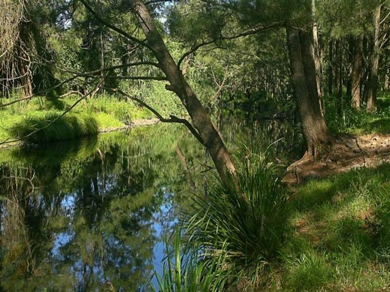 Lostock NSW 2311