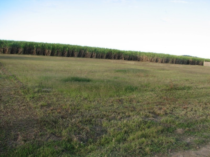 Lot 19 Mackenzies Road, Calen QLD 4798
